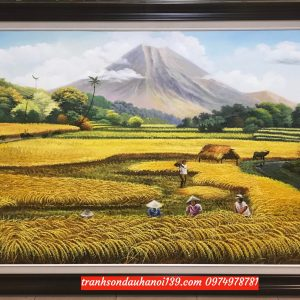Bức họa cánh đồng ngày mùa vui
